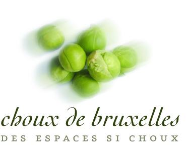 Choux_ok